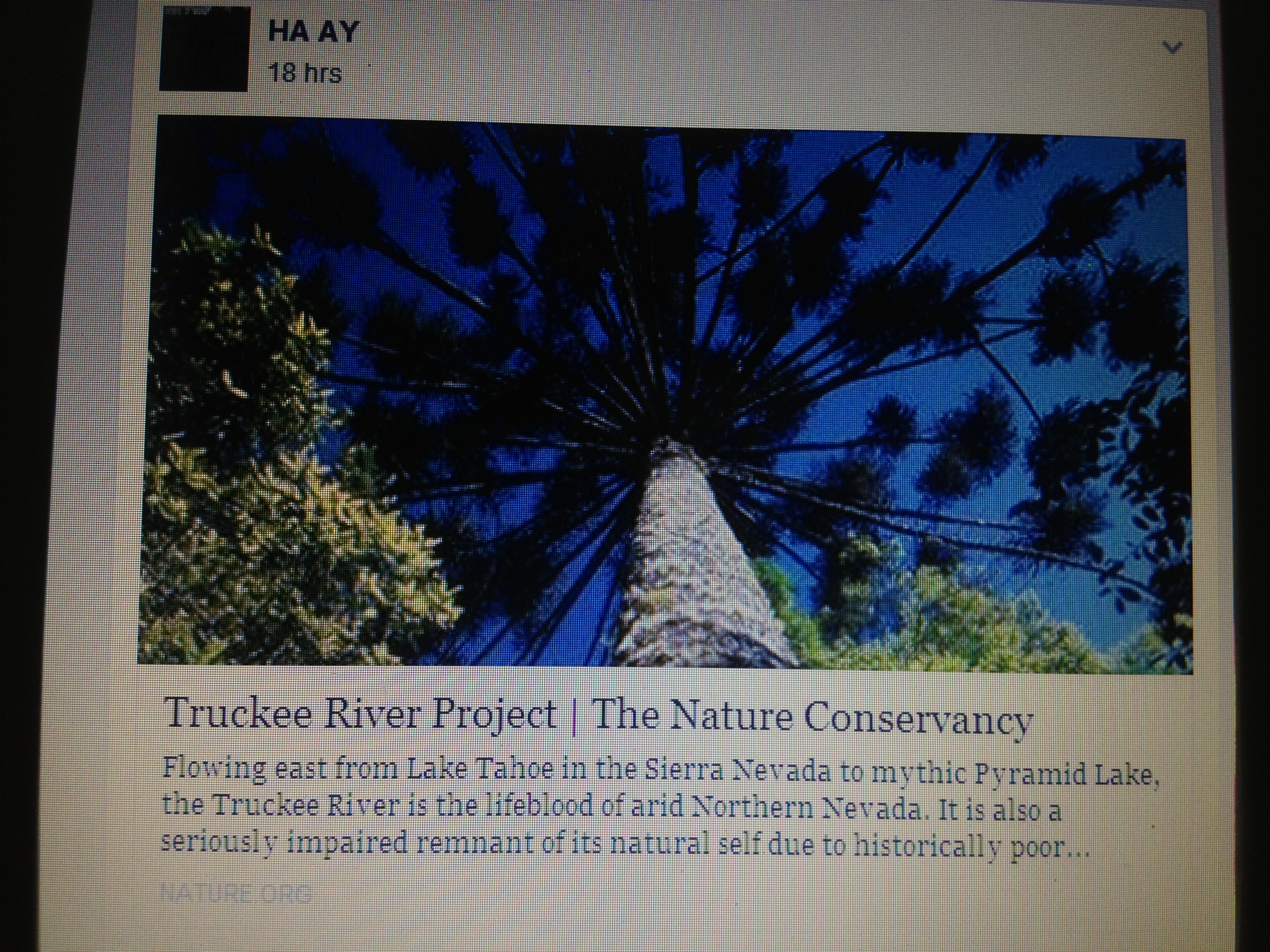 Ecological Research Alternative Resources Haay